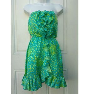 Silk Lily Pulitzer Cold Should Dress